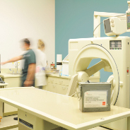 Veterinary Radiology